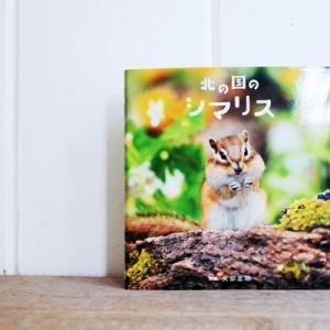 cute photo book*