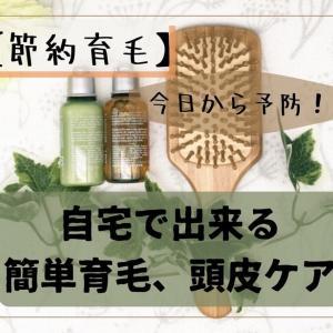【節約育毛】今日から予防!自宅で出来るカンタン育毛、頭皮ケアの手順