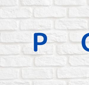 【IPO】コパ・コーポレーション(7689)のサービスを紹介