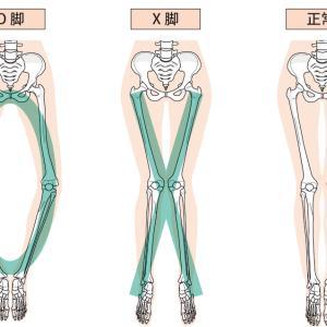 私ってO脚?X脚?特徴とチェックポイントを解説