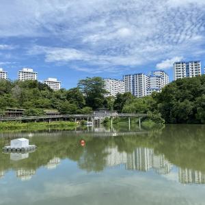 都市とジャングルが共存するシンガポール郊外の魅力 ~ ビューティーワールド発、北西部を歩く