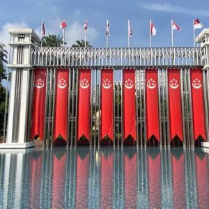 ナショナルデーの国旗をたどる、シンガポールのエネルギーに包まれる旅 (市中心部)