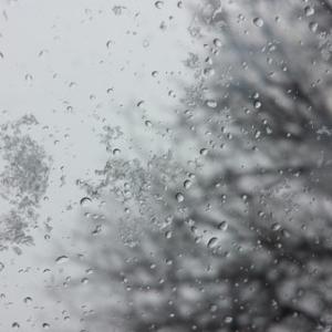 【札幌】本格的な寒さに【雷雨からの降雪】