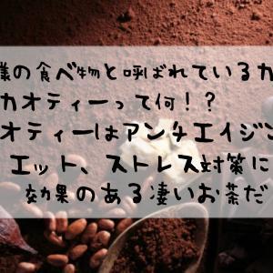 神様の食べ物と呼ばれているカカオ。カカオティーって何!?カカオティーはアンチエイジング、ダイエット、ストレス対策に効果のある凄いお茶だった!