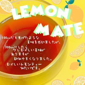 飲むサラダと異名のあるお茶、マテ茶。マテ茶って何?マテ茶の効能について調べてみた。