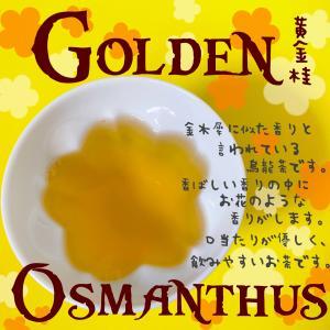 黄金桂って何?どんなお茶?黄金桂にはカフェインが多くて茶に酔う!?黄金桂について調べてみました。