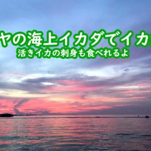 (道具不要)パタヤの海上イカダでイカ釣り(トイレもきれい)