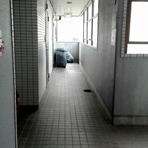【限定】池袋age8・愛内まなえちゃんの体験談レポート【★4嬢の真実】