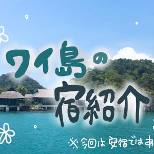 【宿紹介】ワイ島編!!