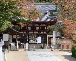 奈良に行ってきました😋