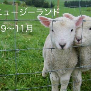 春のニュージーランド(9〜11月)