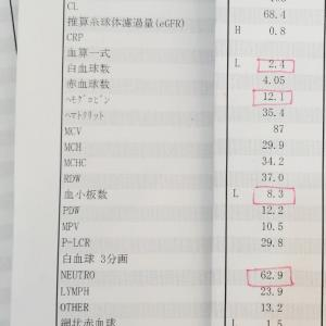 大学病院での検査結果