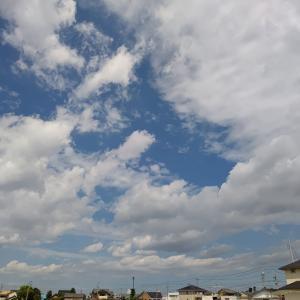 雲のように、自由に生きる