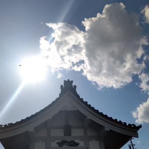 八龍社 龍神のお宮