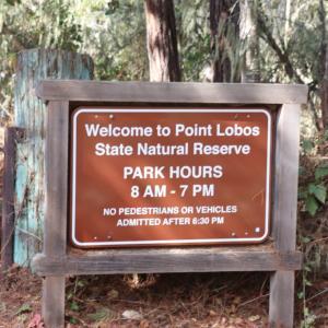 ソコヌケニアカルイ ポイントロボス州立保護区公園