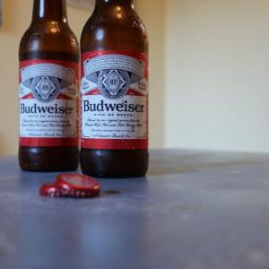 ソコヌケニアカルイ 手作りビールの1年後