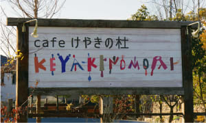 cafe けやきの杜(高浜市)