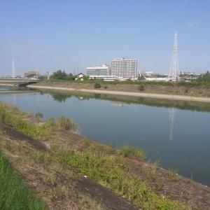 吉田拓郎 『川の流れの如く』
