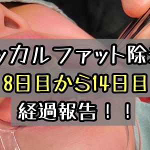 バッカルファット除去のダウンタイム経過ブログ!顔の腫れはどうなったのか?8日目から14日目