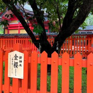 金櫻神社に参拝しました