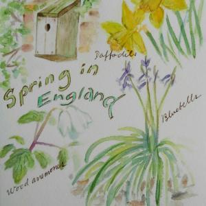 英国の春を告げる小さなしるし
