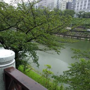 梅雨寒の一日、茶道の稽古へ