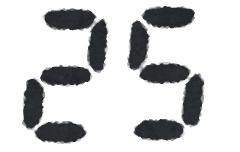 1月25日(月)フマキラー、ダイニチ工業どっちを買おうかな・・・君に決めた!