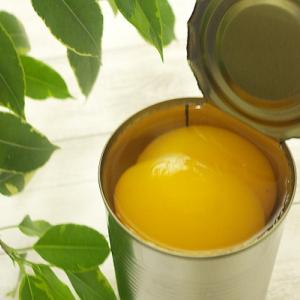 缶切りはこれで代用できる!アウトドアや災害にも役立つアイテム6選