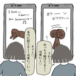 【激可愛!】犬が眠くなる音楽!?