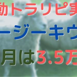 【11月実績】オージーキウイ 手動トラリピ やり方/設定も公開!