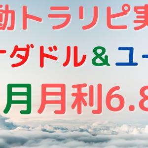 【11月実績】カナダドル&ユーロ 手動トラリピ やり方/設定も!