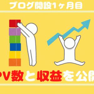 【ブログ運営報告】SEO初心者の1ヶ月目のpv数と収益を公開!