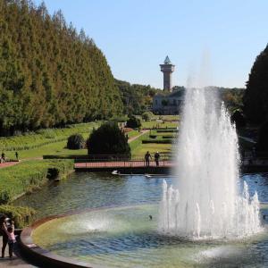 県立相模原公園は景観が良くて試し撮りにもってこい