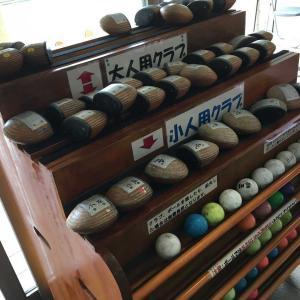 海老名の相模三川公園でパターゴルフを親子で遊んできた