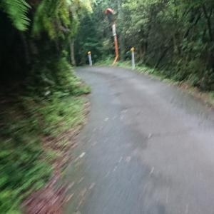 激闘!!BRM703茨木400km part3 地獄の高見山