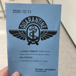 自主隔離付き(?)日本への帰国についてまとめました