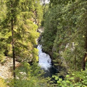 [ワシントン州でハイキング]Twin Falls Trailに行ってきた