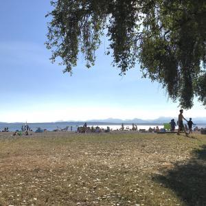 冬ソナと鬼滅、時々ビーチな夏