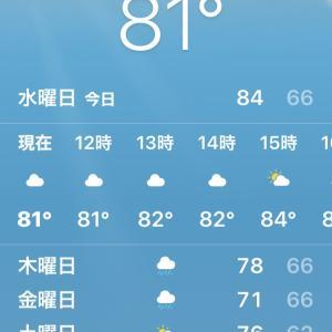 気温がおかしいんです( ̄▽ ̄;)