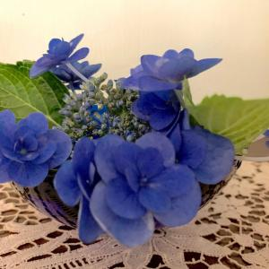食器を使って紫陽花を楽しむ