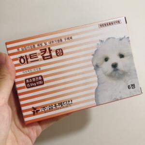初!韓国薬局で犬のフィラリアの薬購入!