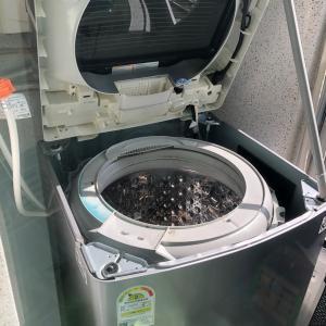 汚すぎ!2年でこれ!?韓国で初めて洗濯機清掃業者を利用してみた!