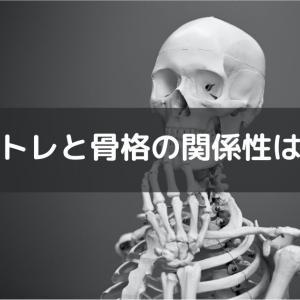 絶対に知るべき筋トレと骨格の関係。骨格に合わせた筋トレ方法とは?