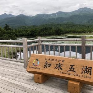 知床五胡 高架木道から世界自然遺産の雄大な景色を堪能してきました