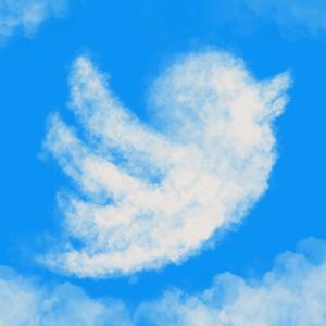 Twitterフォロワーを増やす為の11ステップ