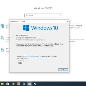 Windows 10 May 2020 Update(20H1)