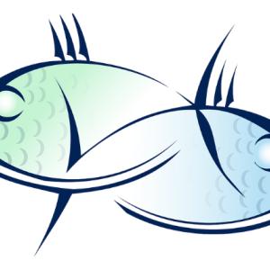 失敗した鯛のあら汁を、味を修正して食べました。その結果・・・