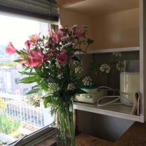 家の花壇の種取りと植え替え