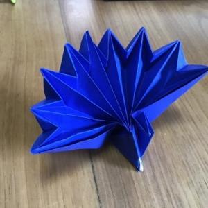 孔雀の折り紙