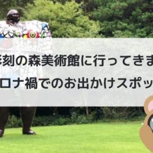 箱根 彫刻の森美術館に行ってきました。~コロナ禍でのお出かけスポット~